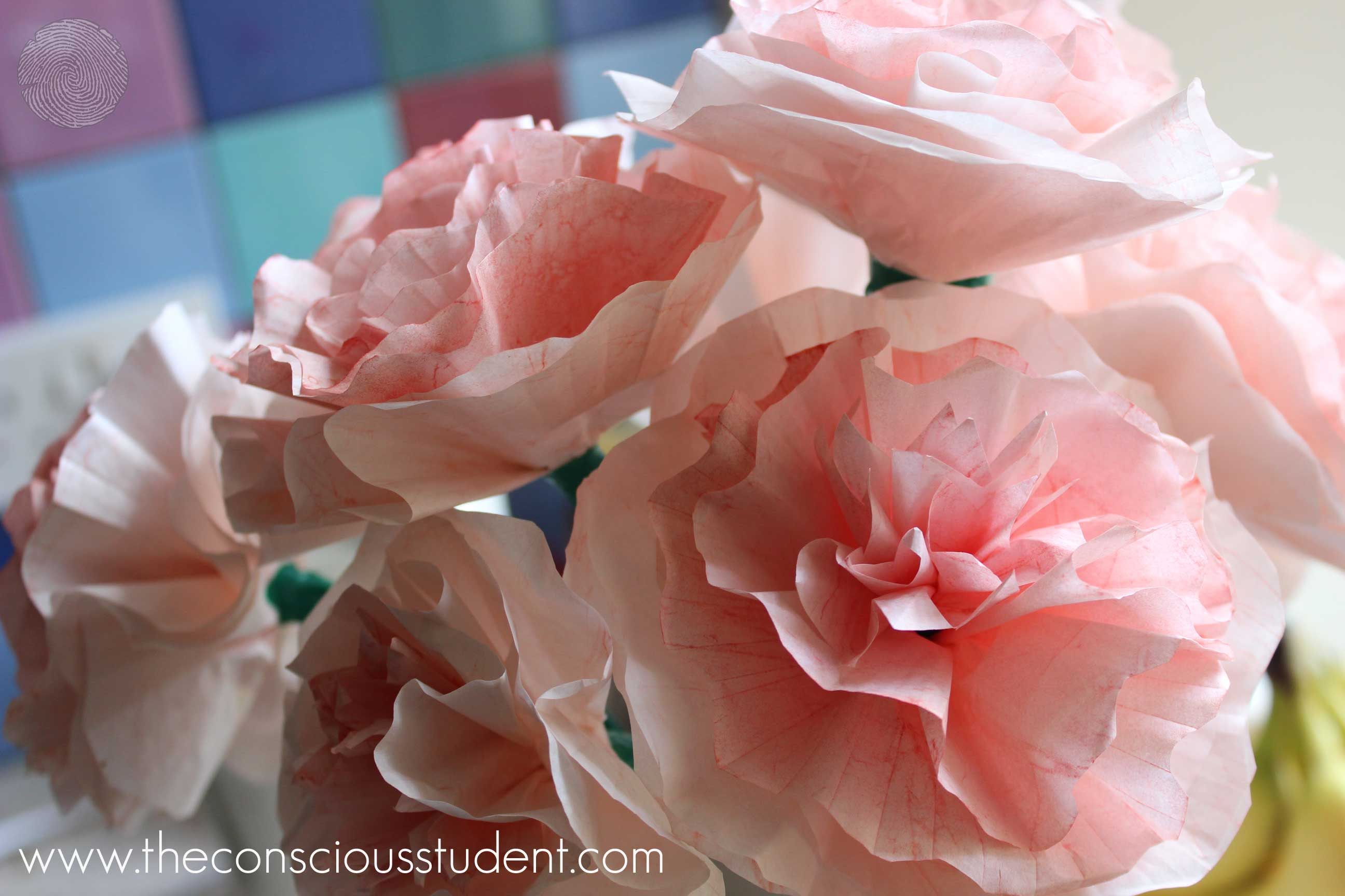 Dorm diy 7 paper flowers the conscious student paper carnation flowers 1 mightylinksfo